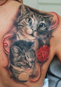 Cats and red ball of yarn tattoo on shoulder blade