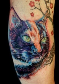 Color cat tattoo portrait